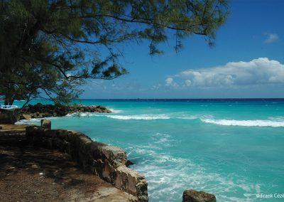 Paysage côtier, la Barbade